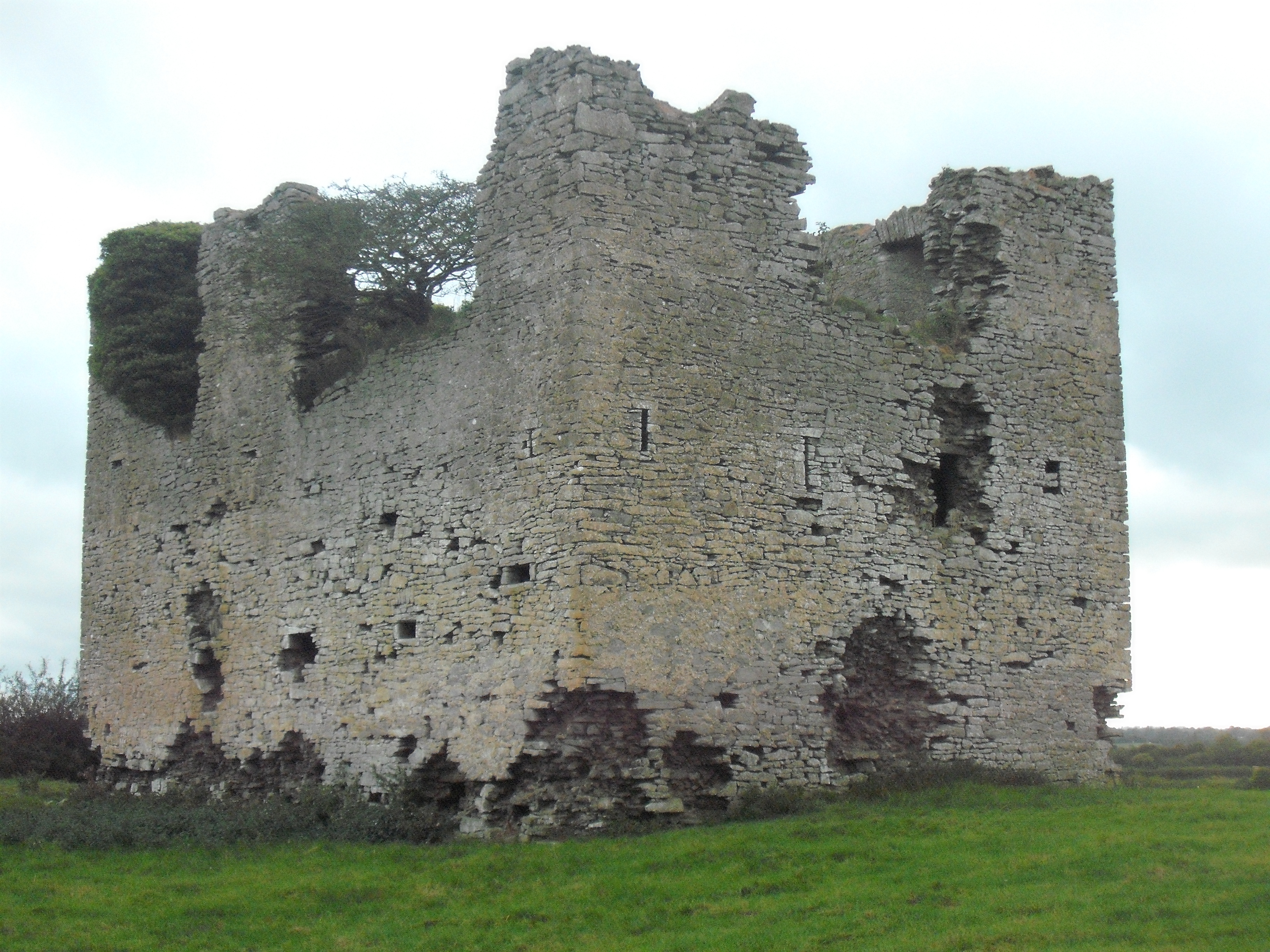 Kilbreedy Towerhouse