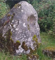Ballaun Stone at Ballybuggy said to have the imprint of Brigids head. A cure for headaches!!!