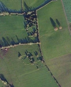 Aerial View of the former nunnery attributed to St. Brigid