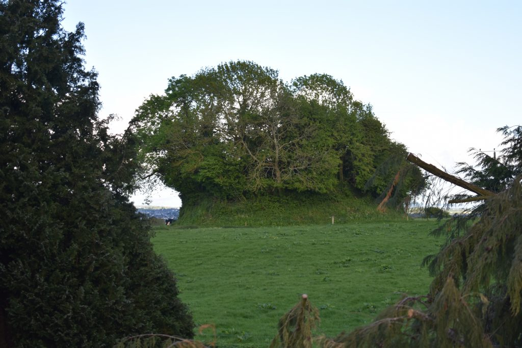 Likely Anglo-Norman Motte at Killeshin